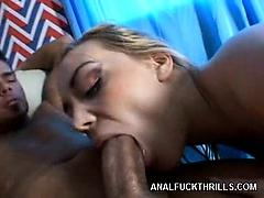 Pornstar Annette Schwarz Bottomed