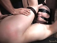Bound cock slave fucked in his dungeon